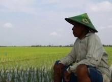 lahan terbatas kemiskinan meningkat