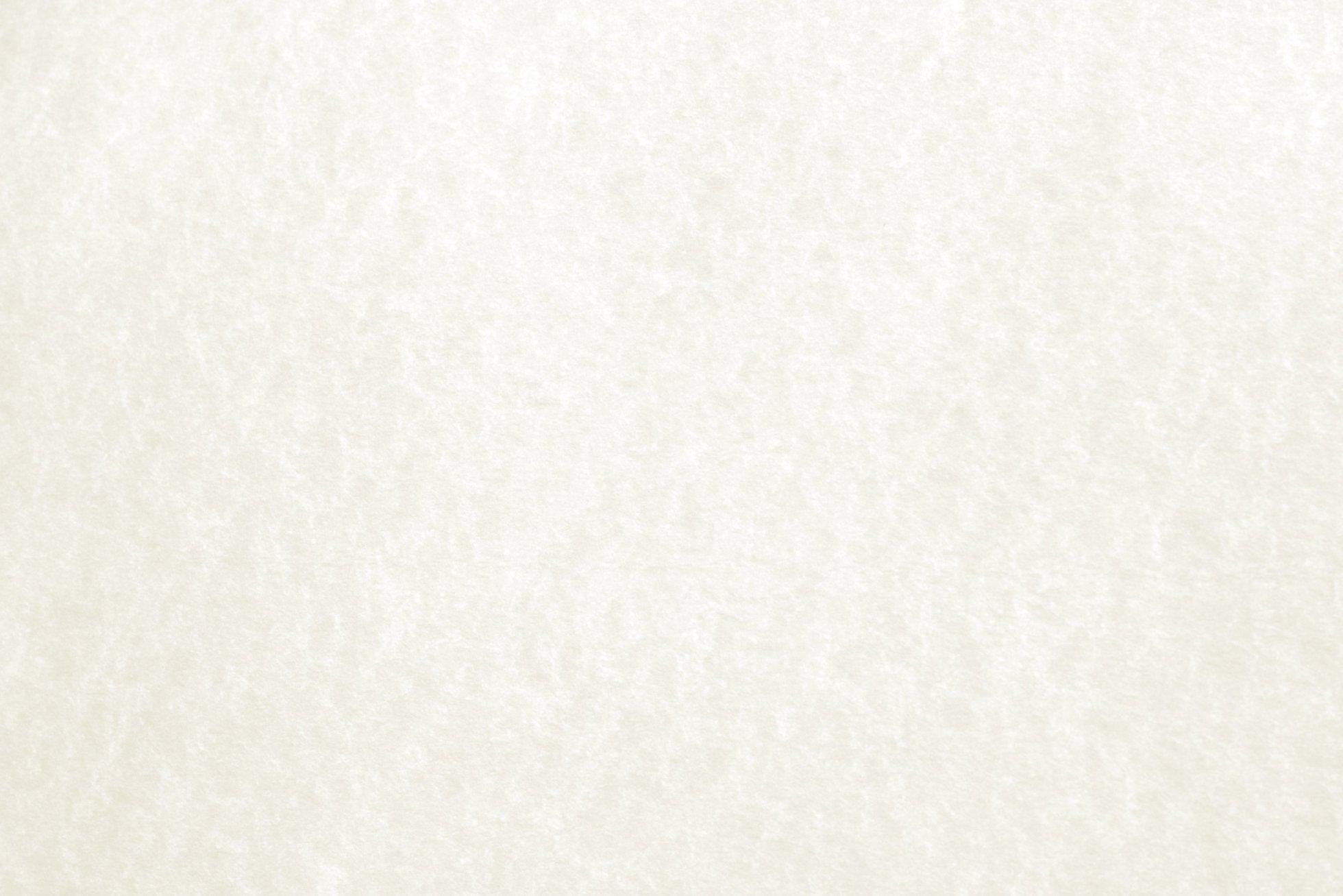 white-parchment-paper-texture (1)
