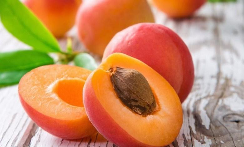 المشمش : فاكهة لذيذة و فوائد عديدة