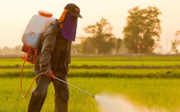 المبيدات تمثل مشكلة للعمال الزراعيين