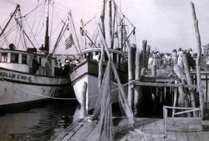 Mayport early 50s shrimp boats