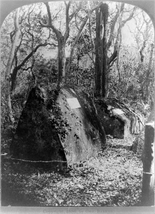 florida-the-mysterious-graves-in-the-forest-ft-george-id-geo-barker-photographer-niagara-falls-n-y