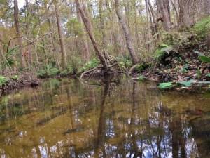 silversmith-creek-2-2