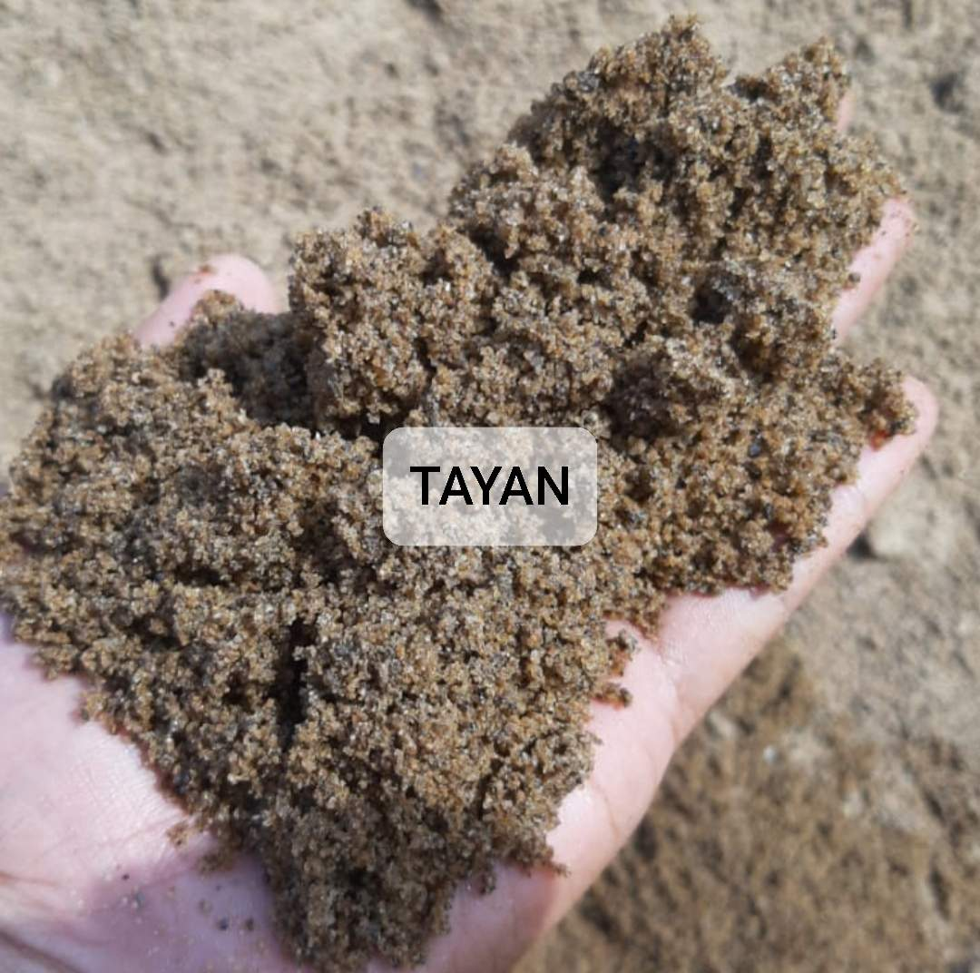 Pasir Tayan