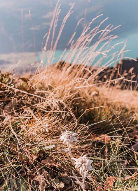 A trip to Entlebuch - Brienzer Rothorn