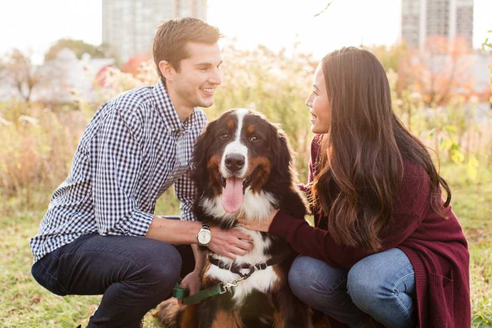 chicago engagement photos, photos with your dog