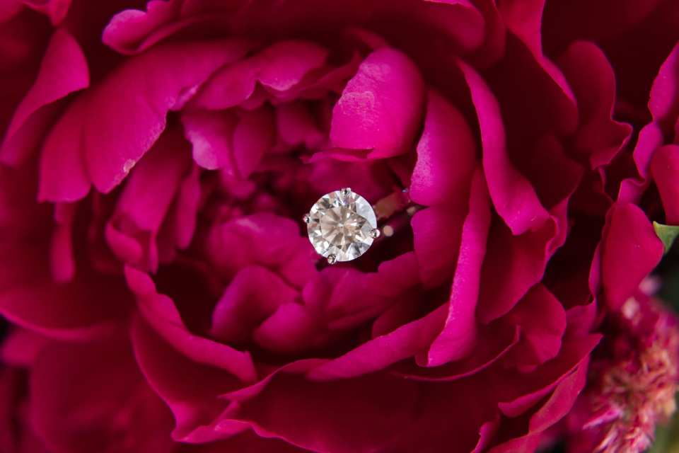 the brides round diamond solitaire ring in the center of a dark pink flower from her bouquet