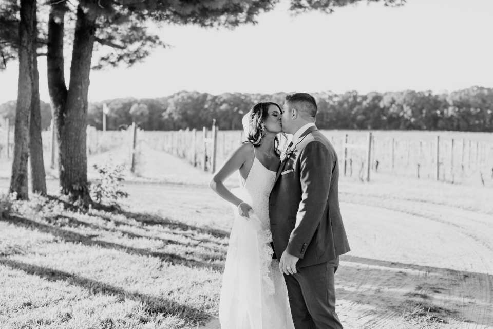 Black and white photo of the bride and groom kissing amongst the vines at the vineyard