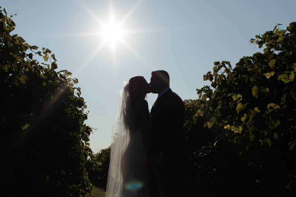 Silhouette photo of the bride and groom kiss amongst the vines at Laurita Winery