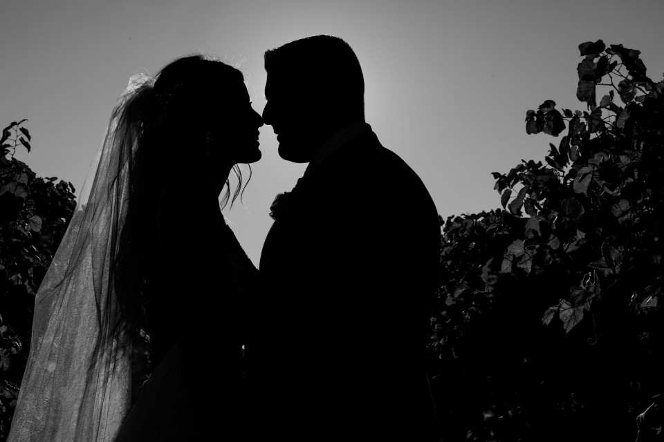 Black and white silhouette photo of the bride and groom nose to nose amongst the vines at Laurita Winery