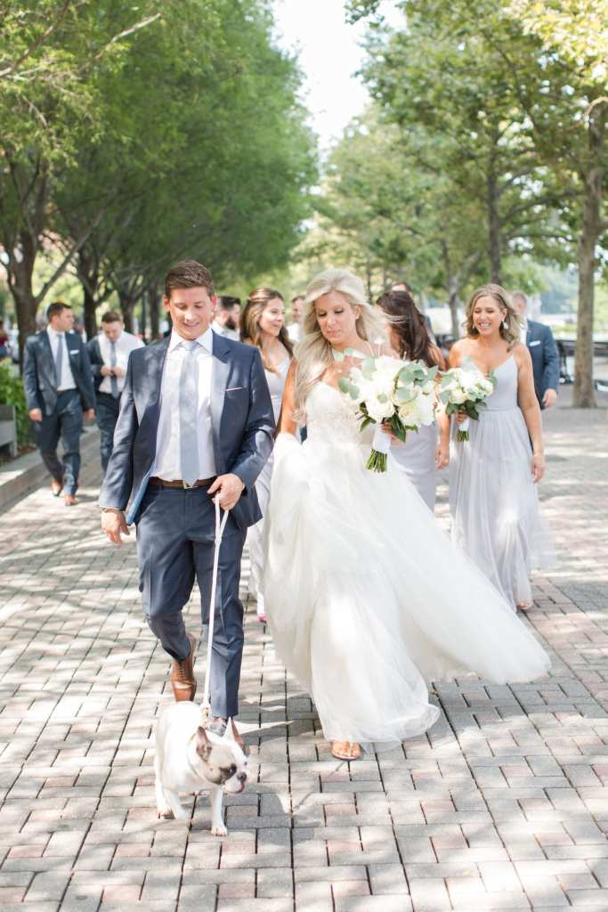 The bride and groom walk together, with their dog on a white leash, with the entire wedding party walking behind them
