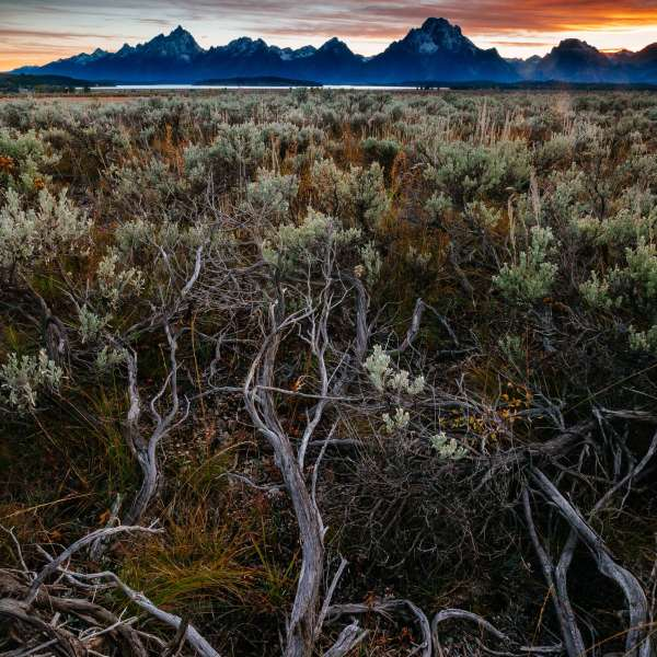 Teton Photo Adventures - Sunset Tetons Autumn Wyoming