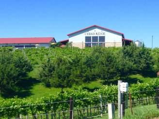 Cedar Ridge Vineyards in Swisher, IA. https://twitter.com/CedarRidgeIowa