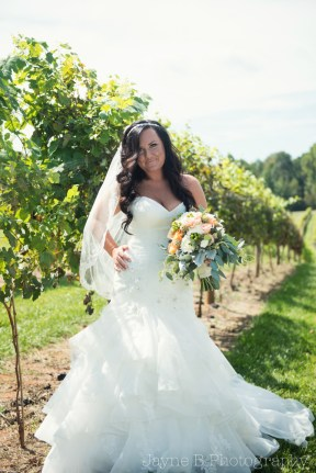 KM_CENITAYINYARD_WEDDING_SP-1019