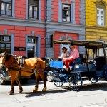 Horse & Buggy Innsbruck