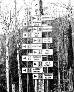 Jay Peak - Trail Sign Tree - Winter 1966-1967