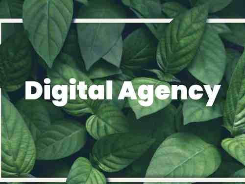 Done For You Agency - DFY Agency Websites In 3 Hot Niches [ Work Outsourced - Huge Potential ]