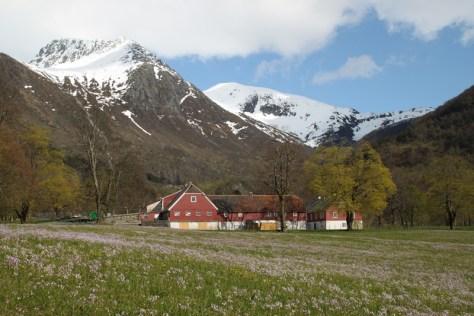 Folgefonna - widok z Rosendal