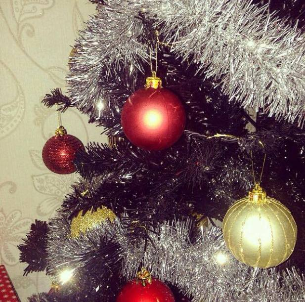 close-up-tree