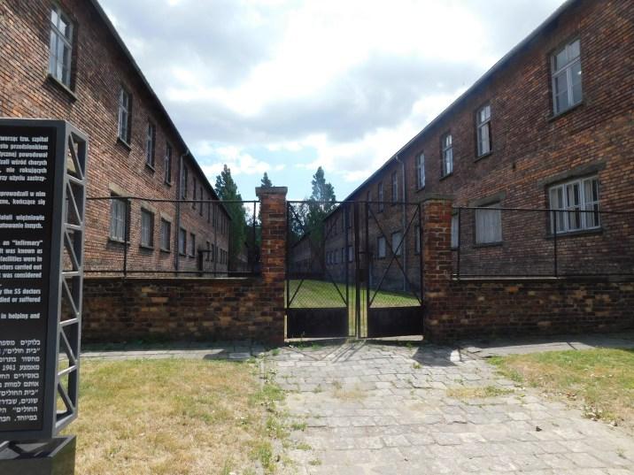 Auschwitz 4