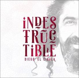 diego_el_cigala_indestructible_1945354669070102762