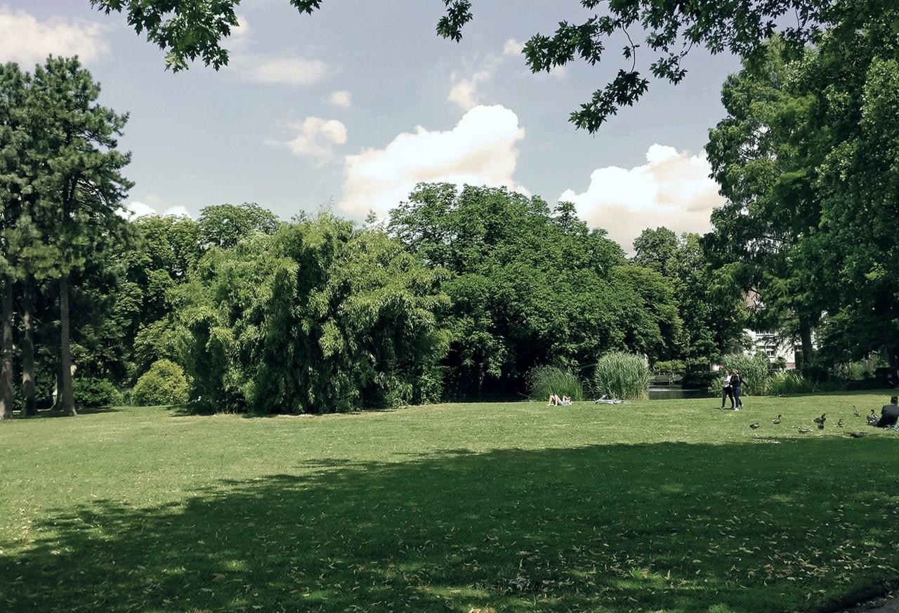 22.09.19_Jazz 'n' Green_Foto_Eyal Kantor-webseite