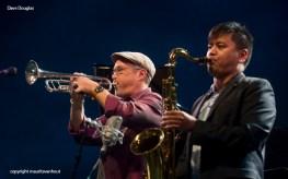 Dave Douglas Quintet live at Jazz Middelheim 2014