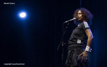 Neneh Cherry live at gent jazz 2015