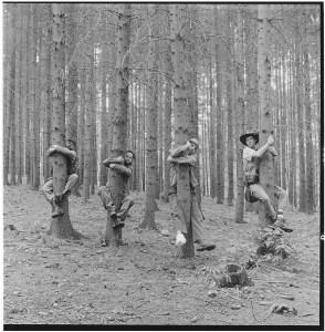 Co přináší nové album kvartetu Viléma Spilky?