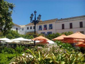 Plaza de naranjas