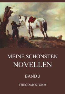 Storm Meine schönsten Novellen, Band 3