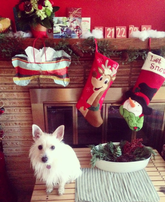 Family Stocking