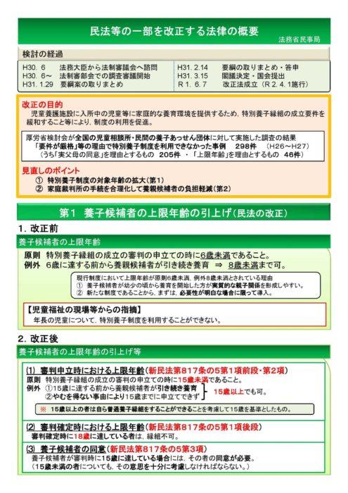 民法等の一部を改正する法律の概要 パンフレット 法務省民事局_ページ_1
