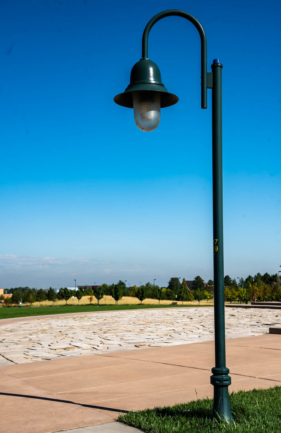 Lamppost in a Park