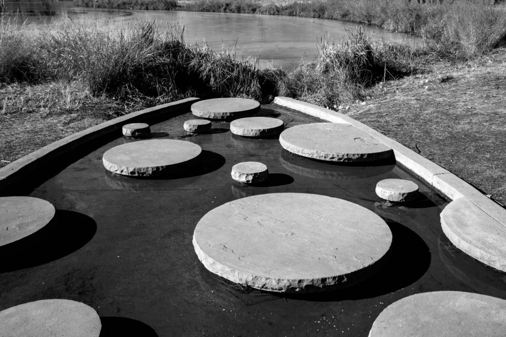Circles and a Pond