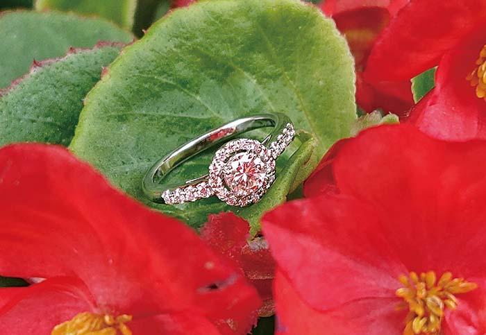 空枠を使ったリモデル例。出来上がっているリング枠(空枠)に、手持ちの宝石をセッティングするもの。写真のリングは中央にセッティングされたダイヤモンド以外が空枠となる。空枠はたくさんのサンプルが用意されているので、石の大きさやお好みのデザイン枠から選ぶことができる。写真中央のダイヤモンドは新しいリングに生まれ変わり、4代目のお嫁さんに手渡される