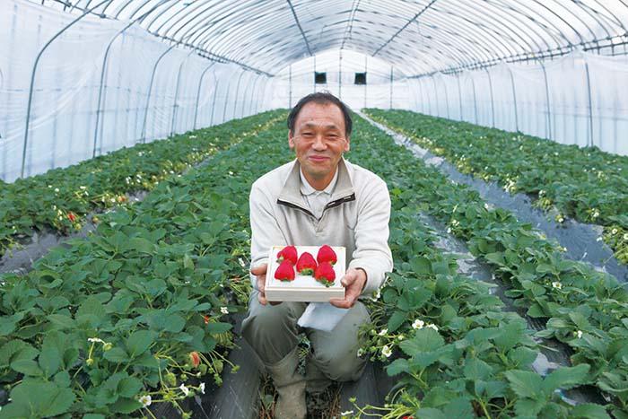 「自信を持ってお届けします」と園主の奥田美貴夫氏。三角錐の美しい形にうっとり。色、艶、香り、甘さ、酸味との見事なバランスは感動的。セリによる販売ではなく氏が責任を持って価格を決めているため、シーズンにかかわらず安定価格で購入できるのもうれしい