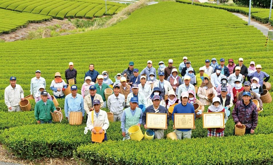 佐々木製茶5