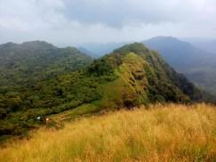 Vantage Point from Parrot's Peak