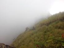 Fog then comes the Rain