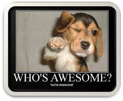 thank-you-beagle