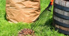 Fall Yard Cleanup & Lawn Maintenance Tips and Advice from True Value