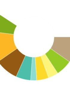 Most important functionality in the growing pie chart code is defining  custom raphael paper attribute so here   concept also animated with rapahel js ria lab rh jbkflex wordpress