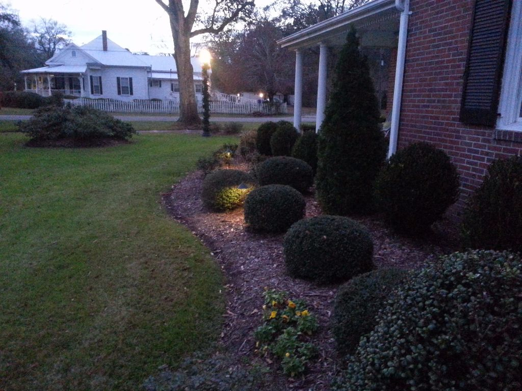 LandscapeLighting-Residential-Williams(15)