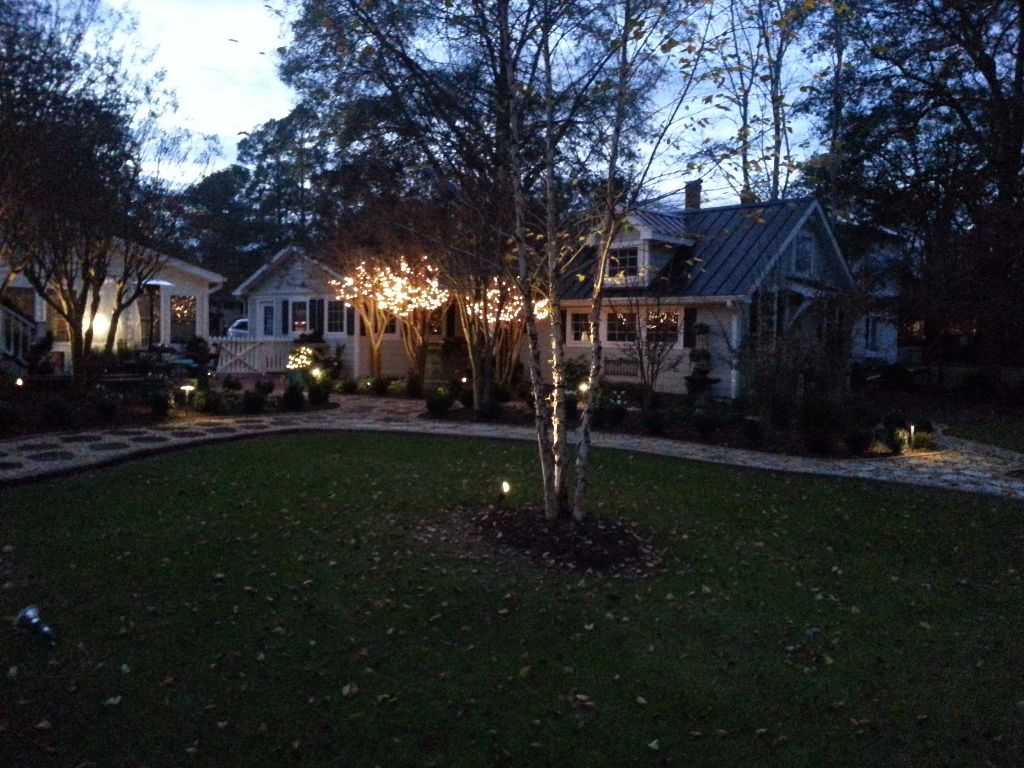 LandscapeLighting-Residential-Williams(8)
