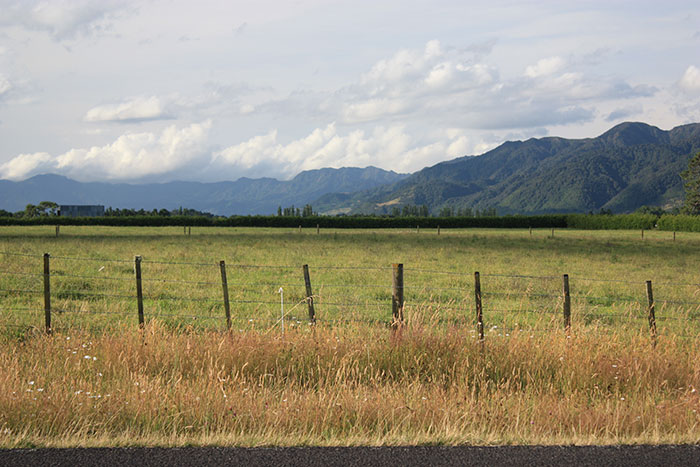 Matamata countryside New Zealand
