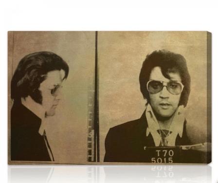 Olivergal.com: Elvis Mugshot