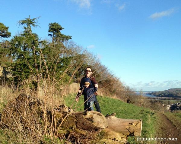 Climbing logs