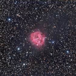 IC 5146, Cocoon Nebula, Caldwell 19, SH2-125