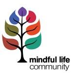 MLP Community 1